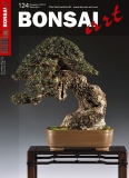 BONSAI ART 124