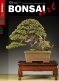 BONSAI ART 136