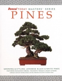 Pines: Bonsai Today Master Series