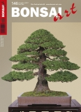 BONSAI ART 145