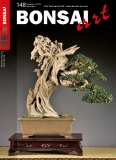 BONSAI ART 148
