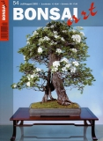 BONSAI ART 054