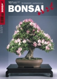 BONSAI ART 107