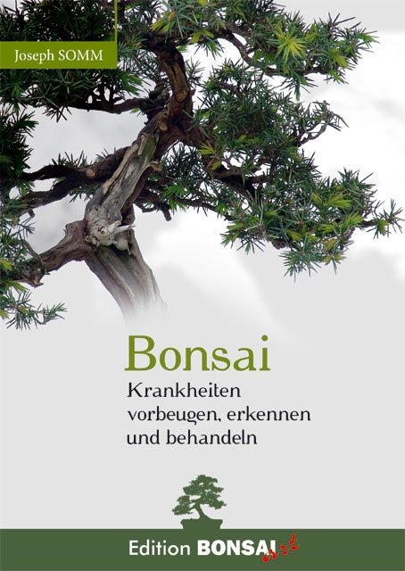 bonsai krankheiten vorbeugen erkennen bonsai art. Black Bedroom Furniture Sets. Home Design Ideas