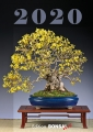 BONSAI ART - Kalender 2019