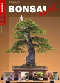 BONSAI ART 091
